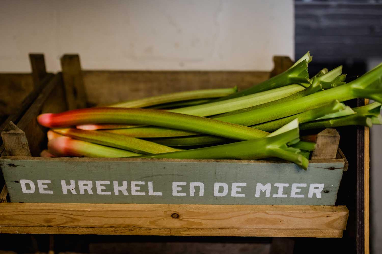 Het verhaal van biologisch tuinbedrijf Aardevol in Tongeren
