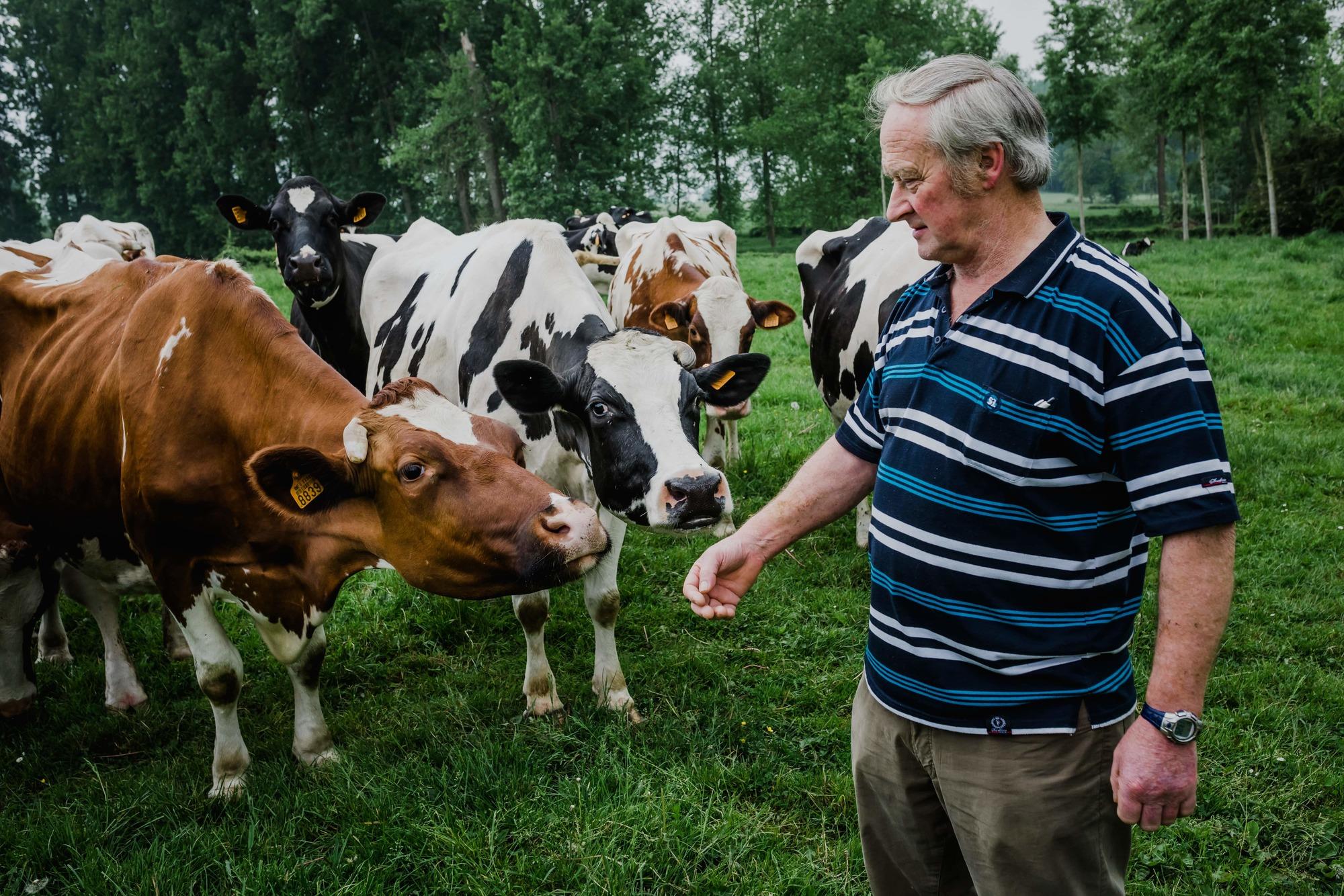 Het verhaal van aardappelproducent Hubrechts - Coenegrachts