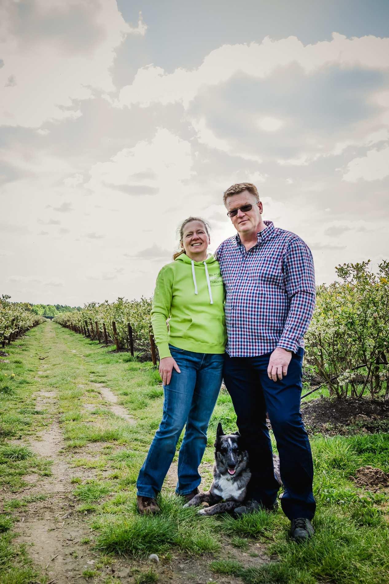 Het verhaal van blauwe bessenplantage Schrijnwerkers in Meeuwen-Gruitrode