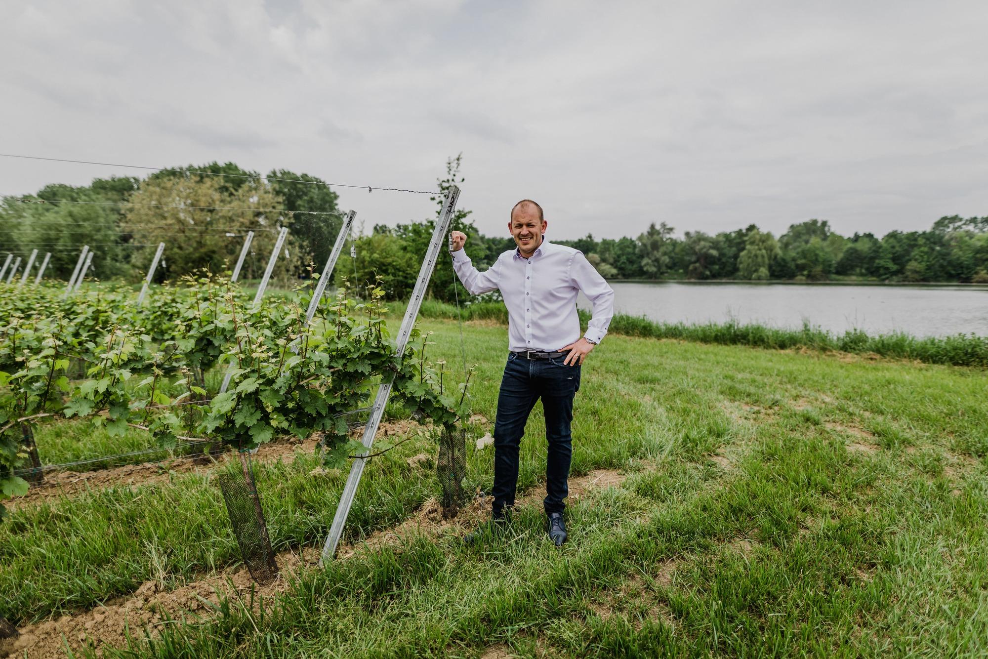 Het verhaal van wijndomein Thilesna in Dilsen-Stokkem
