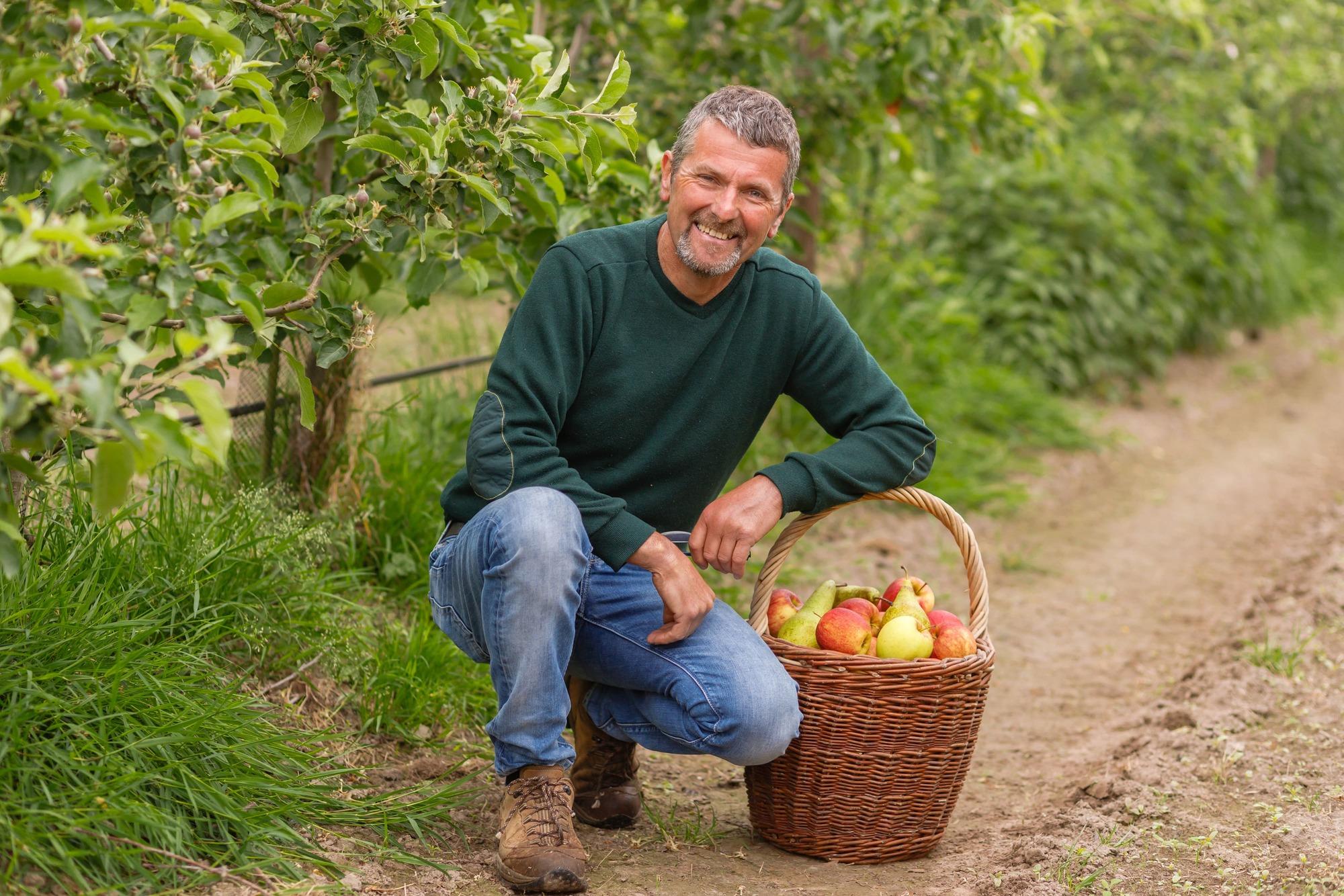 Het verhaal van het Jacobsfruit in Sint-Truiden