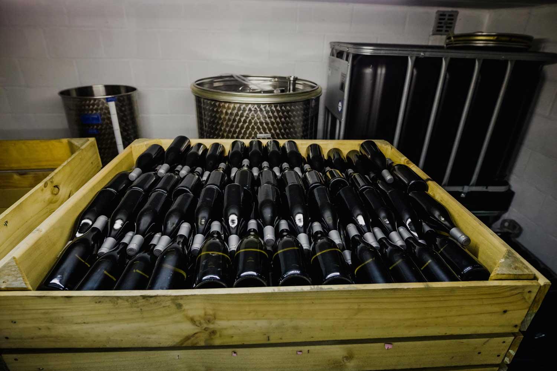 Het verhaal van wijndomein Kitsberg in Heers