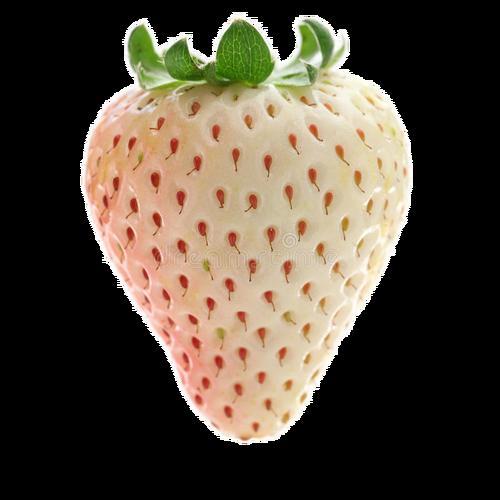 Witte aardbei